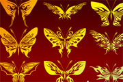 25 Abstract Butterflies in Vector