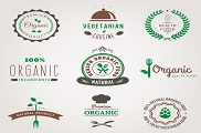 9 green food logo vector