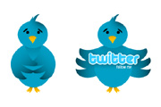 Vector Twitter Bird Icon