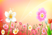 Free Vector Flowers 04