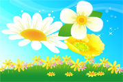 Free Vector Flowers 08